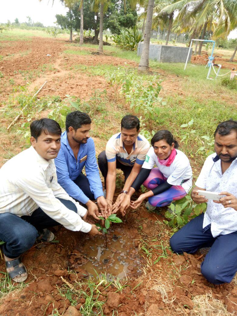 Planting-saplings-at-Oorukera